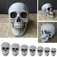 Halloween Decorations Artificial Skull Head Model Plastic Skull Bone Horror Skeleton Party Bar Model Human Anatomical Model(China)