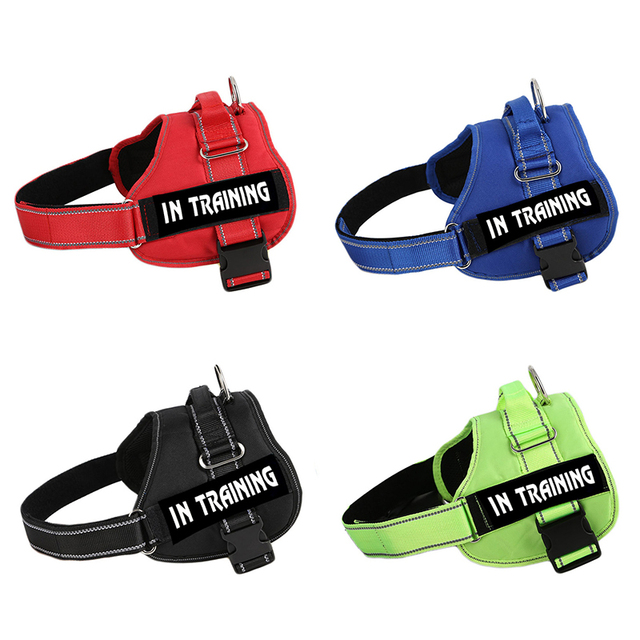 Adjustable Nylon Dog Harness Reflective Dog Collar Personalized Dog Harness and Leash Set Small Medium Large Dog Harness Vest 5