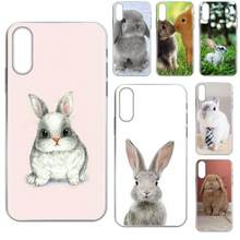 For Samsung Galaxy Note 5 8 9 S3 S4 S5 S6 S7 S8 S9 S10 5G mini Edge Plus Lite TPU Mobile Pouch Free Baby Rabbits Bunny(China)