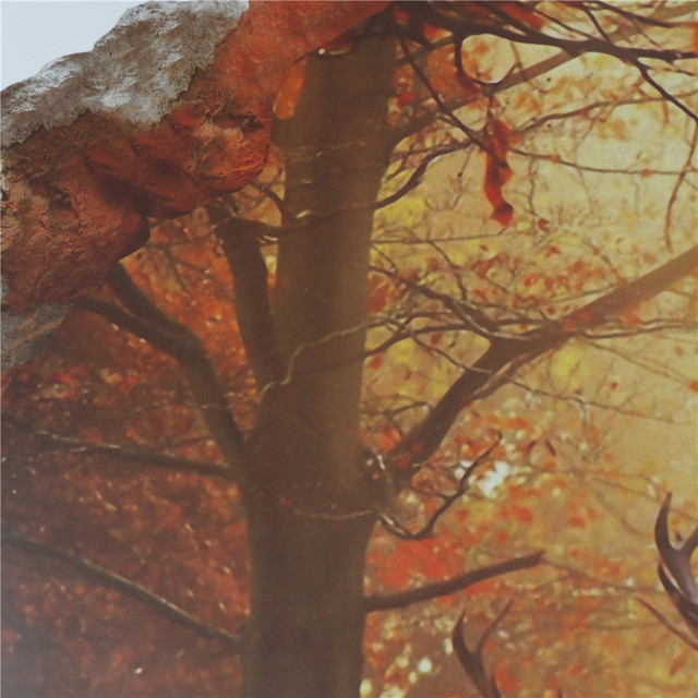 Forest Deer 3D 50×70 cm 8