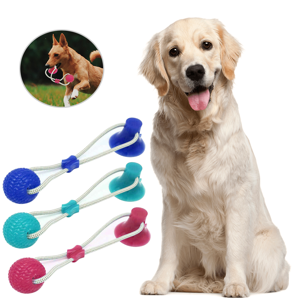 Multifunction Pet Molar Bite Dog Toys Rubber Chew Ball Cleaning Teeth Safe Elasticity TPR Soft Puppy Suction Cup Biting Toy(China)