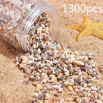 1300-1500 sztuk pudło Natural Shell muszla akcesoria do dekoracji części DIY materiał elementy biżuterii Fish Tank Home Decoration tanie i dobre opinie