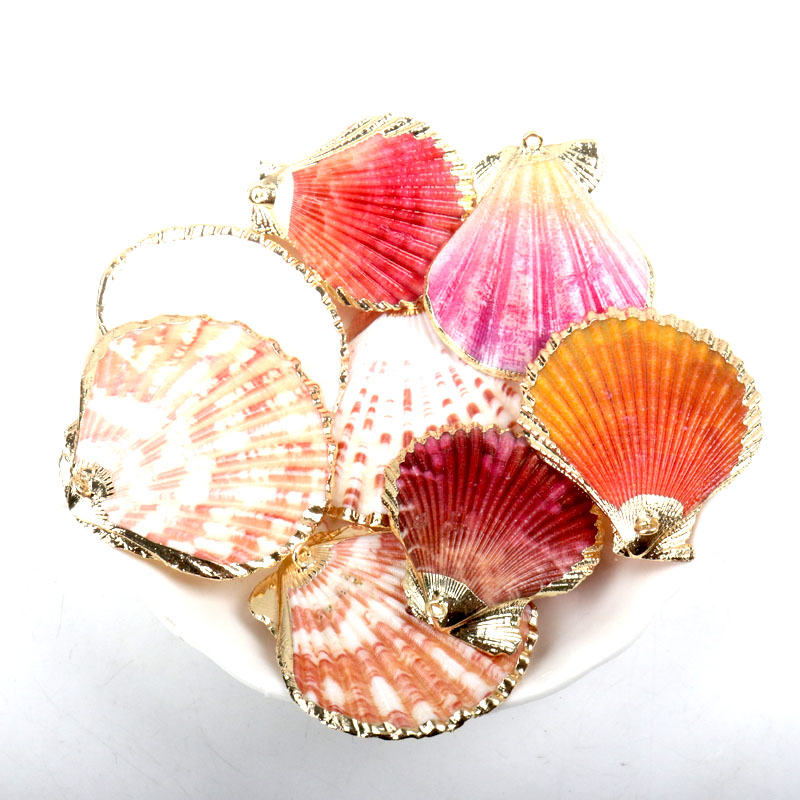 Gold Plated Natural Sector White Colorful Sea Shells For DIY Handmade Charms Jewelry Craft Decoration 5pcs