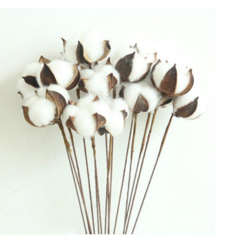 1 pçs flores secas decorativas ramo de algodão natural pequenas flores plantas hastes flores secas para festa de casamento em casa decoração