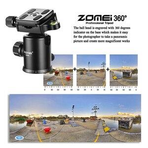 Image 5 - Zomei Z669C מקצועי סיבי פחמן חצובה חדרגל קומפקטי מעיים Stand כדור ראש עבור נסיעות דיגיטלי DSLR מצלמה GoproTripode