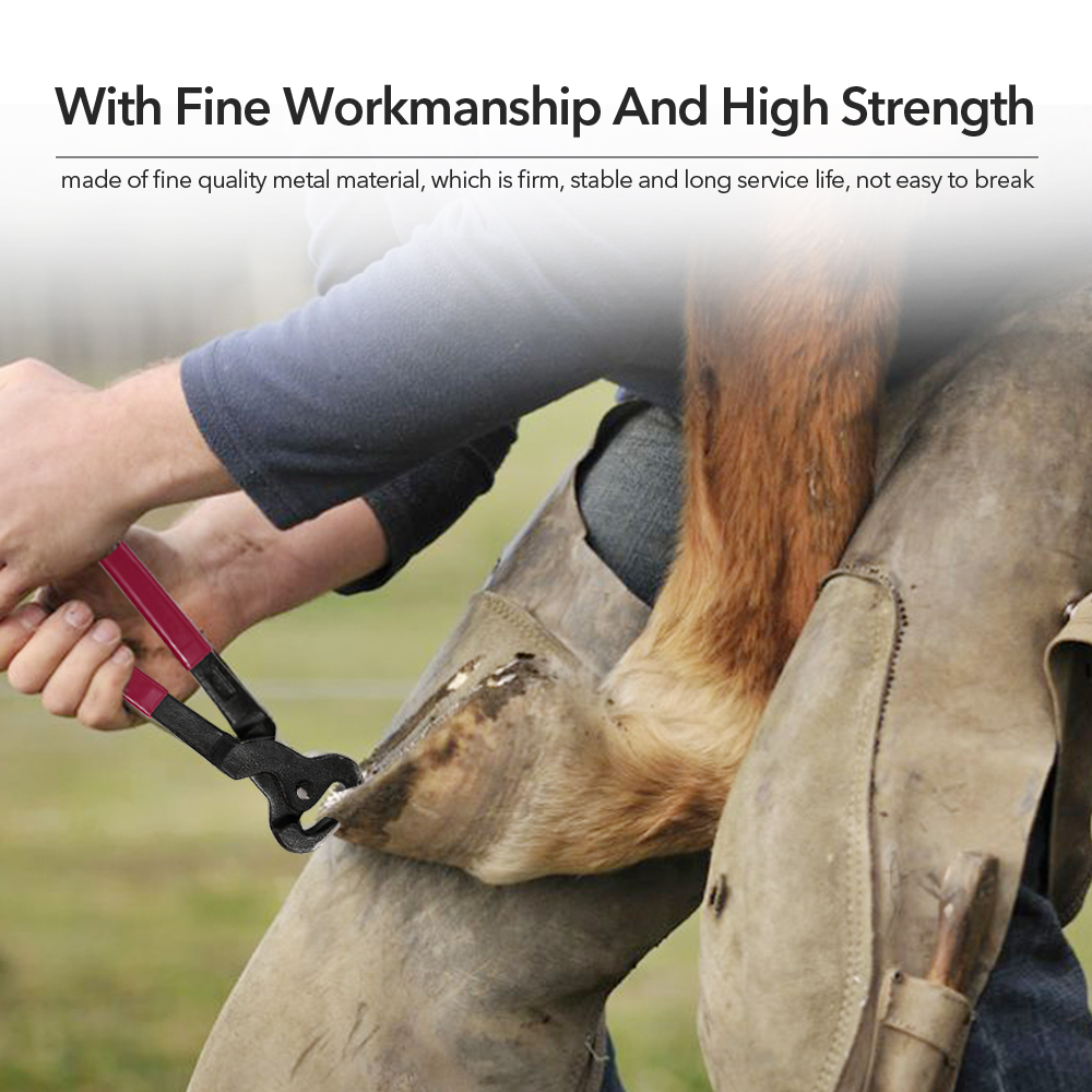 Horse Care Accessory 4PCS Horse Farrier Hoof Nipper Trim Shoeing File Rasp Handle Hoof Cutter Tool