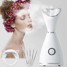Hot Mist Facial Steamer RGCTL Nano lonic Warm Mist Humidifier Atomizer Sprayer Moisturizing Face SPA with 5 Piece Stainless цена и фото