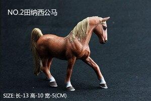 Image 3 - Kinder Simulation Zoo Modell Spielzeug Wilde Tiere Wild Horse Racing Pony Einrichtungs Fotografie Requisiten Handwerk Ornamente