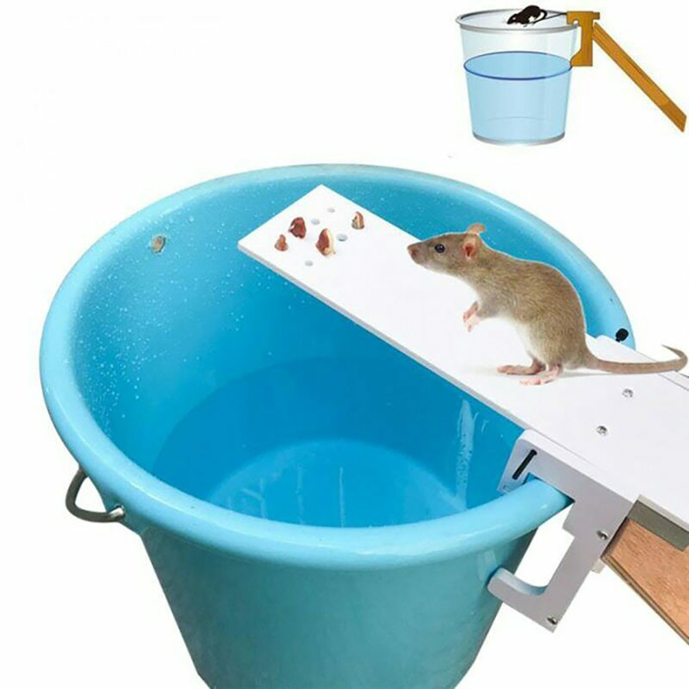2020 DIY Home Garden Pest Controller Rat Trap Quick Kill Seesaw Mouse Catcher Bait Home Rat Traps Mouse Pest Mice Traps