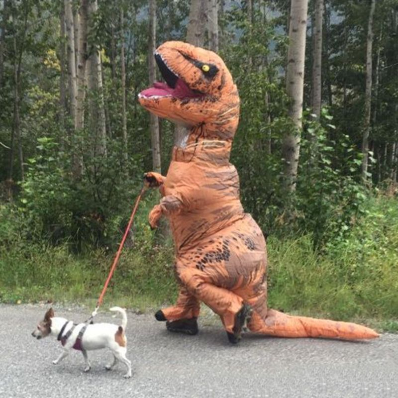 Child Adult Inflatable Costume Dinosaur Costumes T REX Blow Up Fancy Dress Mascot Cosplay Costume For Men Women Kids Halloween