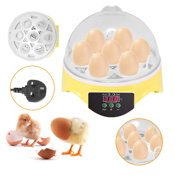 7 Eggs Capacity Chicken Eggs Bird Incubator Egg Rack Tray Automatic Intelligent Control Quail Parrot Incubation Tool UK Plug 1