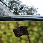 Black Skull Flag Car...