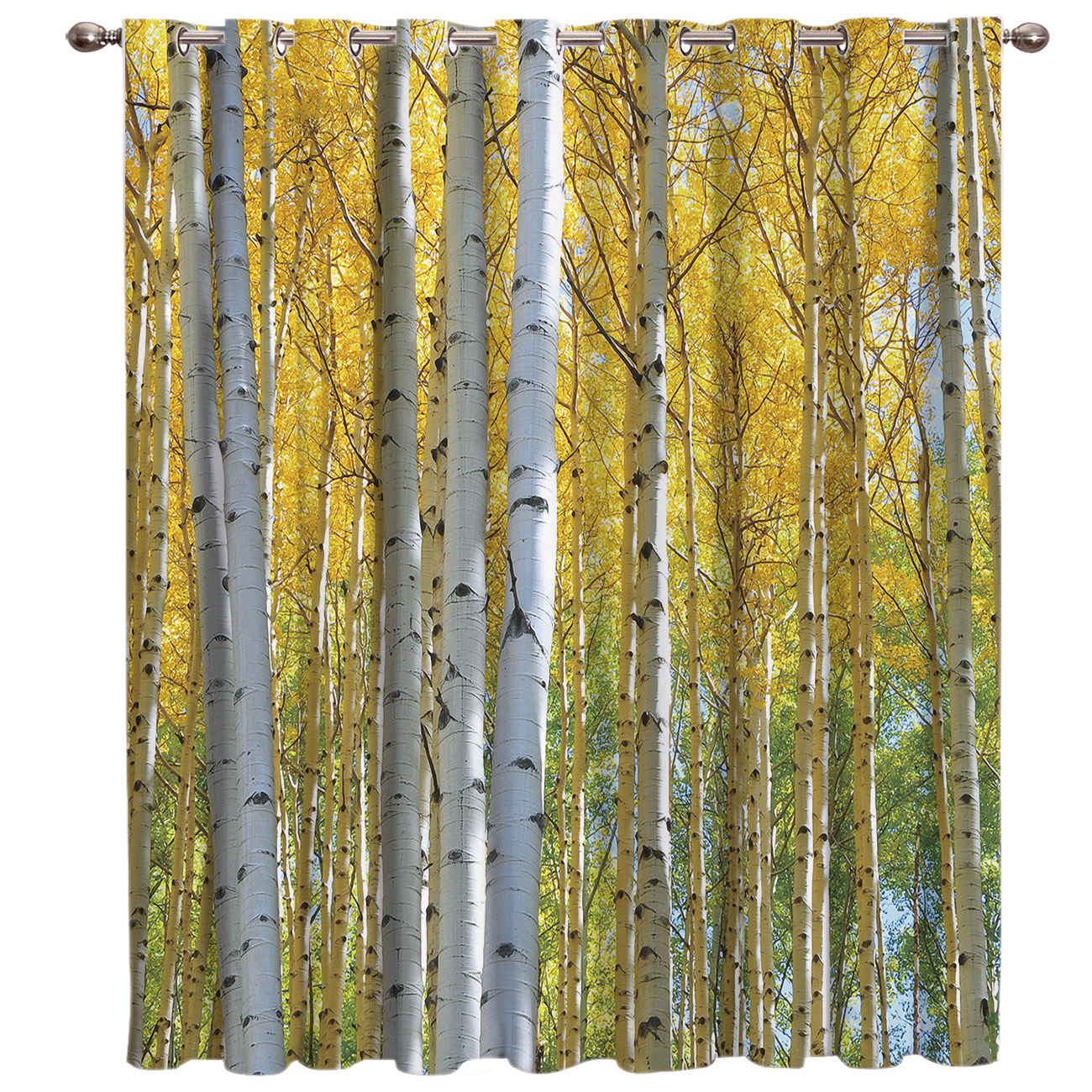 Yellow Birch White Branches Forest Landscape Window Curtains Dark Living Room Curtain Rod Kitchen Drapes Fabric Indoor Curtains Aliexpress