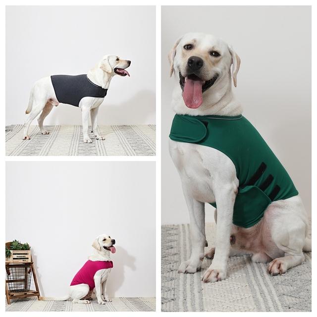 Dog Anxiety Vest XS-XL