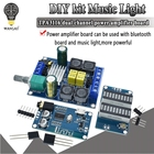 TPA3116 DIY kit Musi...