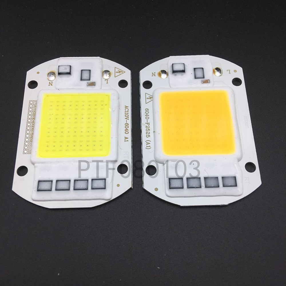 10 Pcs LED COB Lamp Chip 50 W Chip 110 V 220 V Input Smart IC Fit Voor DIY LED Overstroming Licht Koud Wit Warm Wit Straat Lam