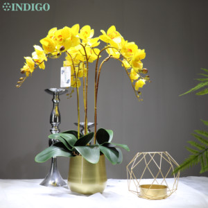 Image 5 - White Orchid Flower Arrangment 90ซม.(3 Orchid + 3ใบ + หม้อตัวเลือก) real Touchดอกไม้งานแต่งงานตกแต่งกิจกรรมFlorist