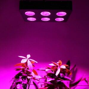 Image 5 - Lampe horticole de croissance Led COB, 2000/1500/1000/500W, spectre complet, éclairage pour tente/chambre de culture médicale de plantes, culture hydroponique