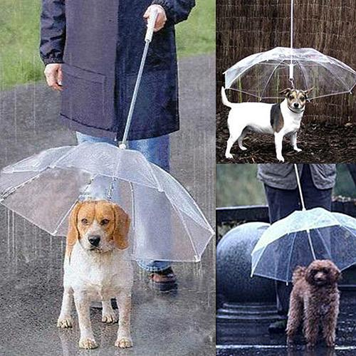 Dog Walking Waterproof Clear Cover Built-in Leash Rain Sleet Snow Pet Umbrella Pet Products
