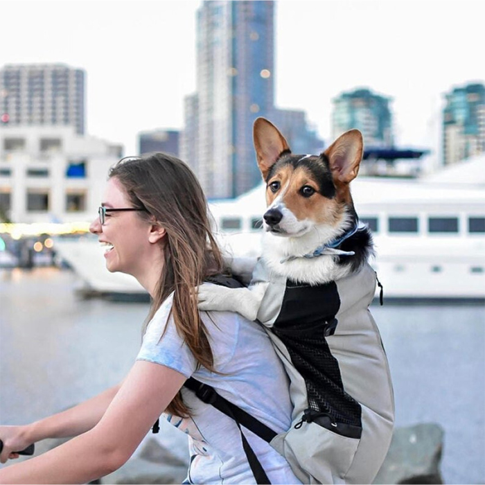 dog carrier backpack 60 lbs