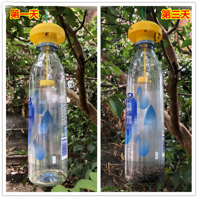 Practical Fruit Fly Trap Killer Plastic Drosophila Trap Fly Catcher With Attractant orchard vegetable pest control garden Insect