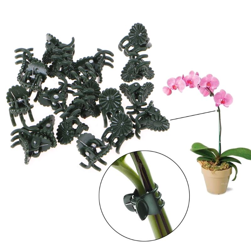 20 Pcs Plastic Plant Fix Clips Orchid Stem Vine Support Vegetables Farm Flowers Fruit Tied Bundle Branch Clamping Gardening Tool