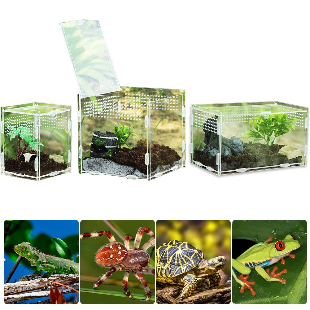 Multiple Vents Reptile Breeding Box Acrylic Transparent Reptile Tank Insect Spiders Scorpions Mantis Feeding Box Terrarium Tank