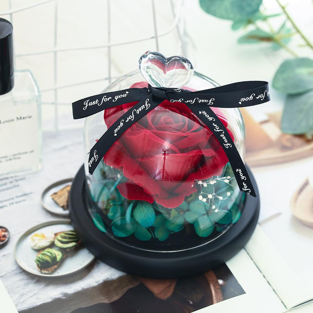 Beauty And The Beast Preserved Valentines Day Gift Exclusive Rose In Glass Dome With Lights Eternal Real Rose Mother's Day Gif