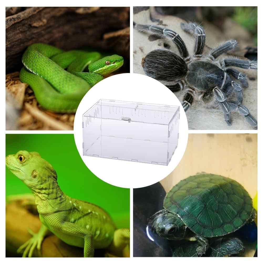 Akrilik Terarium Spider Pembiakan Kotak Reptil Makan Kotak untuk Mendaki PET Terarium Ular Spider Kadal Scorpion Kelabang