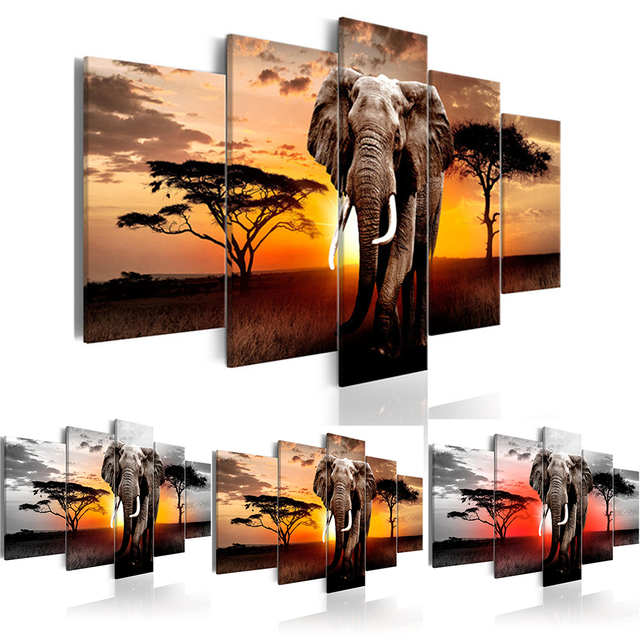 Elephant in Sunset | Multi-Picture