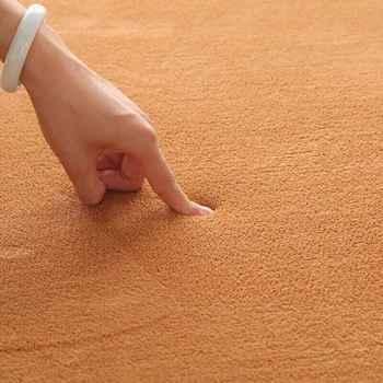 2020 Band Short-haired Coral Velvet Carpet Living Room Floor Mat Coffee Table Mat Bedroom Blanket Bed Rug Floor Mat Door Cushion