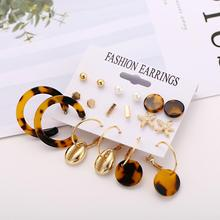 Vintage Leopard Print Earrings Set For Women 2019 New Fashion Geometric Round Acrylic Stud Earring Bohemian Female Jewelry