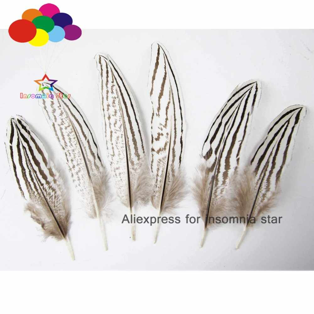 5pcs 25-30cm Silver Pheasant Tail Feathers DIY Craft Millinery Vase Home Decor