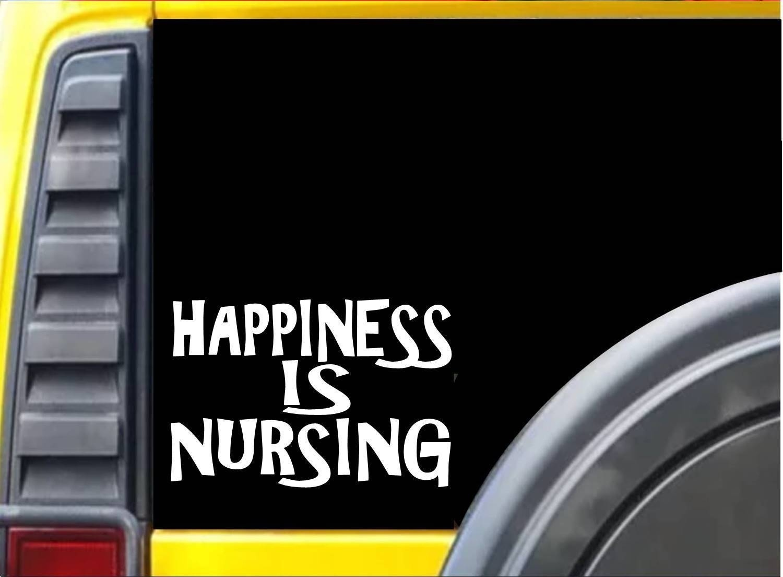 Happiness Is Nursing K306 8 Inch Decal Stethoscope Sticker Computer Sticker