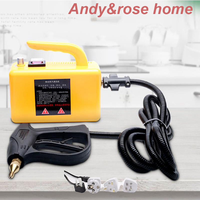 220V2600W High Temperature High Pressure Cleaning Machine Steam Cleaner Automatic Pumping Sterilization Disinfector Steam Machie