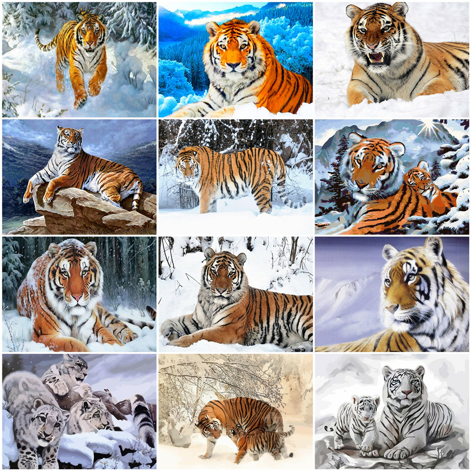 AZQSD DIY Oil Painting By Numbers Animal Acrylic Paint Decor For Home Coloring By Numbers On Canvas Tiger Handmade Gift