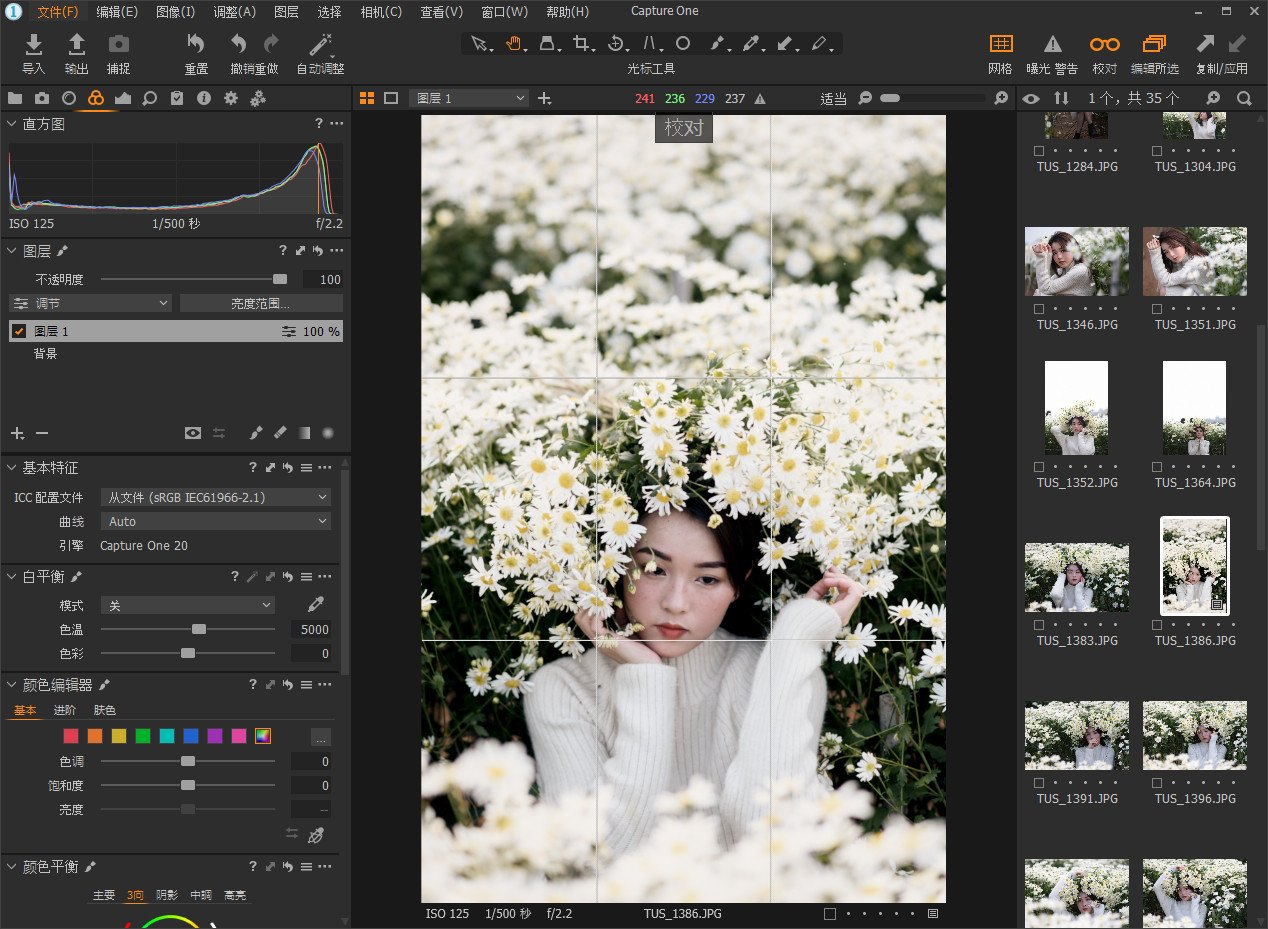 软件下载-飞思数码图像处理Capture One 20 Pro v13.1.1WIN/MAC中文版(3)