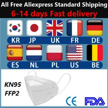 N95 face masks Anti Infection KN95 FFP2 Masks Particulate Mouth Respirator Anti PM2.5 Safety Protective Mask