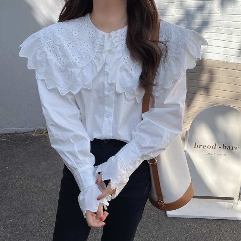 H4b38ba4be8654811bb61be3303d5d99ff - Spring / Autumn Hollow Out Big Lapel Collar Puff Sleeves Loose Solid Blouse