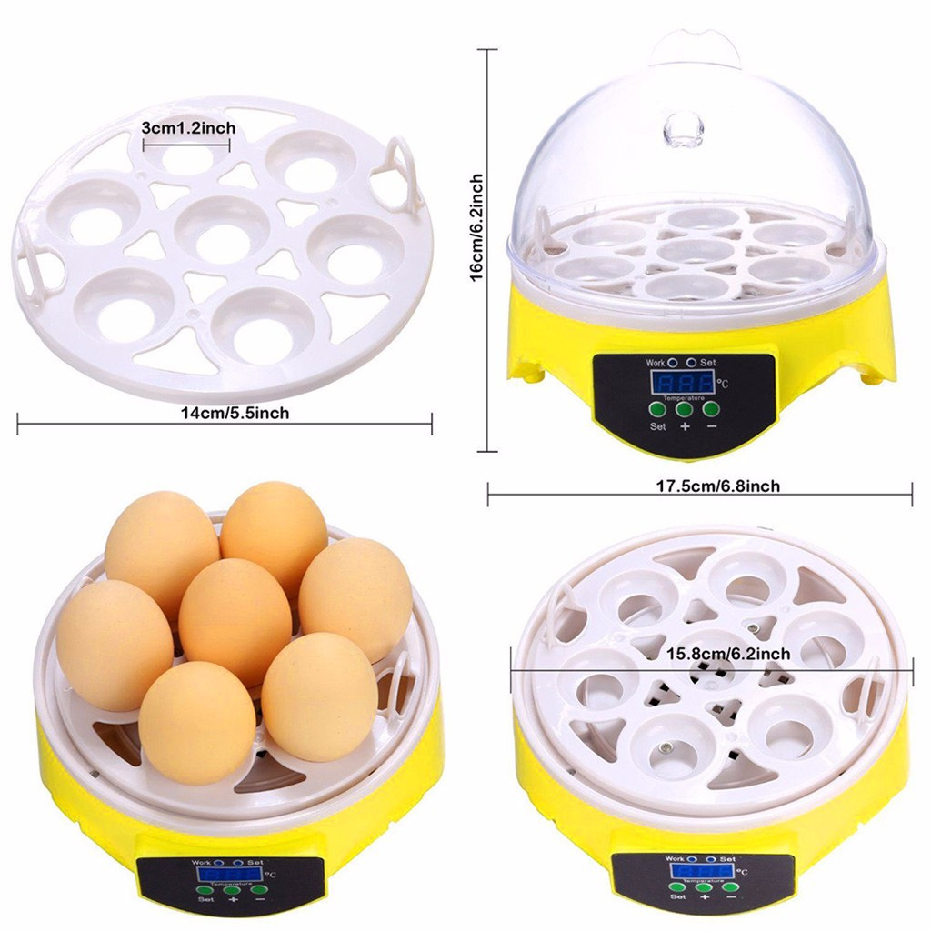 Mini Digital Egg Hatching Incubator With LED Display for Chicken And Duck 3
