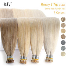WIT Pre-Bonded Remy Keratin Stick Hair Extensions I Tip Hair Color Cold Fusion Straight Hair Capsules Full Head 1g/pc 20