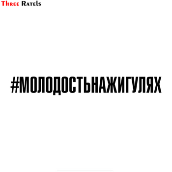 three ratels tz 1950 14x19cm respect for bikers car sticker funny stickers styling removable decal Three Ratels TZ-1887# 60x7.3cm #molodost'nazhigulyay car sticker funny car stickers styling removable decal