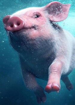 Cuadro cuadrado completo diamante pintura 5D diamante pintura 5D pintura kit pintura pinturas herramientas animales cerdo nadar