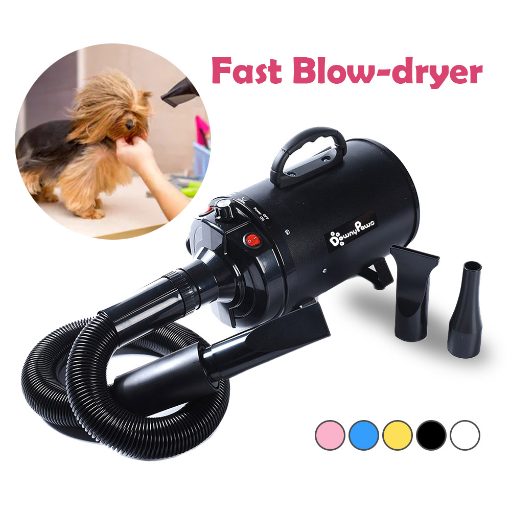 Power-Hair-Dryer Blower Grooming Dogs Wind-Secador Warm Small 2800W for Pet-Dog Cat Large