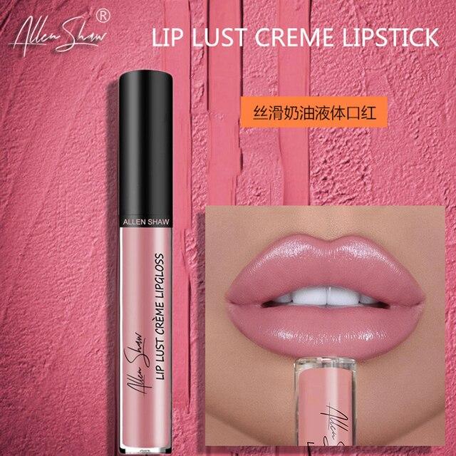 뜨거운 판매 립스틱 방수 립글로스 밤 입술 레드 섹시 염료 12 색 패션 여성 메이크업 선물 화장품 TSLM1