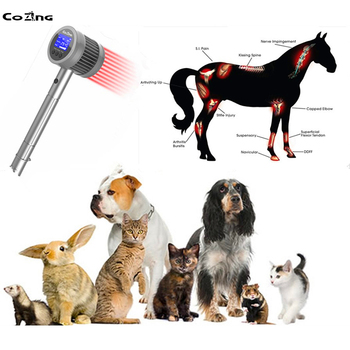 Veterinary Cold Laser Therapy Equipment Physical Therapy Device Treatment Arthritis Back Knee Pain