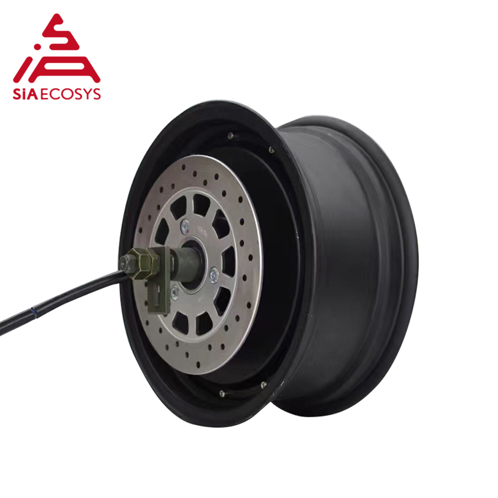QS Motor 12x5.0inch detachable design 3000W 260 V1 high effctive single shaft in wheel hub motor for electric car image