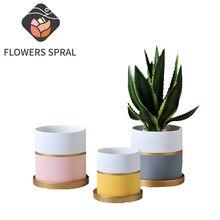 Nordic Gold Silk Light Luxury Flower Pot With Golden Tray Succulent Green Plants Tiger Skin Mint Garden Ceramic Flower Pot