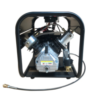 4500PSI compressor Double Cylinder high pressure PCP air compressor with auto stop and auto purge for PCP tank gas filling