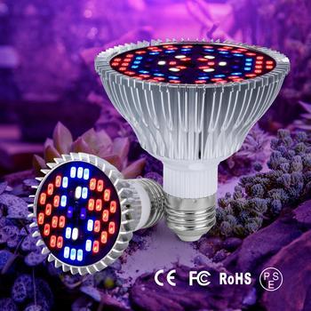 E27 lampa ledowa do hodowli roślin Fitolamp E14 LED Light dla roślin Full Spectrum phyto-lampa AC85-265V dla roślin kwiaty sadzonka uprawa tanie i dobre opinie NoEnName_Null 85-265 v 11cm Aluminum Aluminium Rosną światła provide all the light for plant 2 Years PL004 55mm-115mm